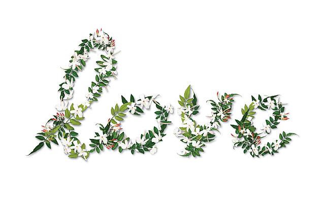 AM 14.FEBRUAR IST VALENTINSTAG – WIE WÄRE ES MIT EINEM VERWÖHN-GUTSCHEIN?